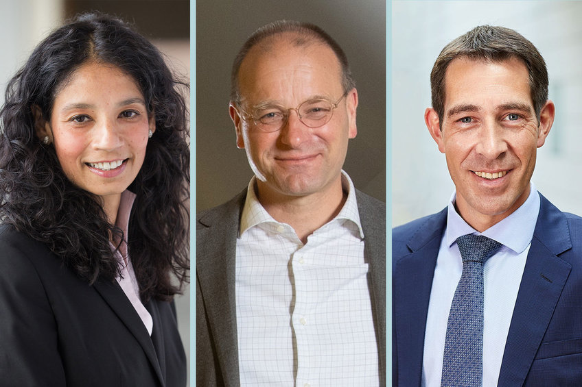New team, new ideas: Senate of the Max Planck Society elects new Vice Presidents